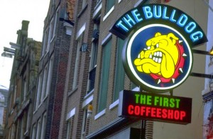 The Bulldog First Coffee shop Amsterdam