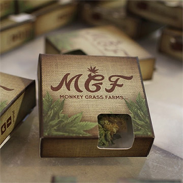 Monkey Grass Farms Marijuana Producer