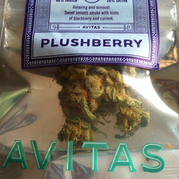 Avitas Agriculture Plushberry Sold at Bothel's Herbal Nation