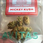 Cannabis Review of Mickey Kush