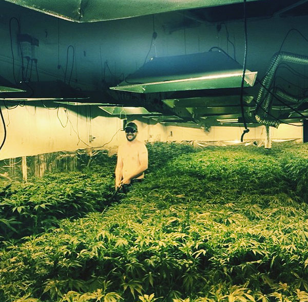 Buddy Boy inside marijuana farm