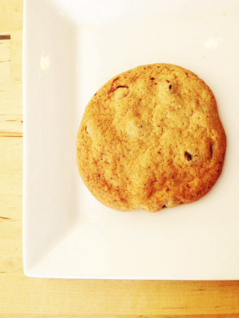 Spot BotanicaSeattle Soft Cookie Chocolate Chip