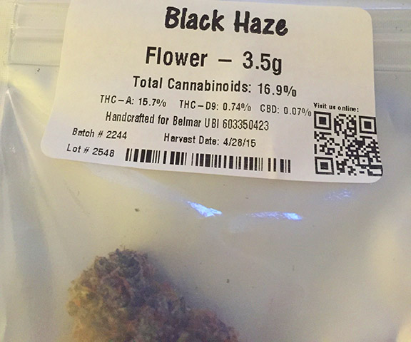 Pioneer-Nuggets-Black-Haze-marijuana-review-2